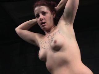 Redhead bdsm sub humiliated by her maledom
